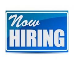 Account Assistant Job in Dubai