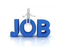 Accountant Required for International Organization