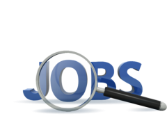 Accountants and Data Entry Operator