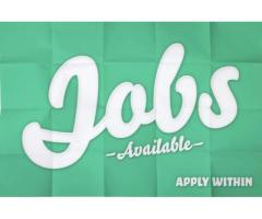Store keeper required for warehouse in Karachi