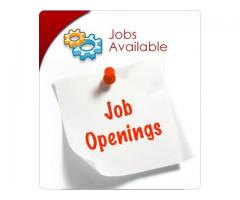 Accountant Cum Office Assistant Job in Islamabad