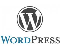 WordPress Developer Male And female Required For Famous Company In Lahore