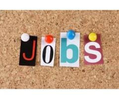 Office Staff Expert In Photoshop Required For Our Company In Karachi