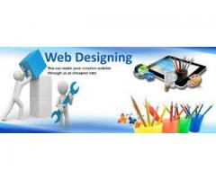 Professional Website Designing Services In Reasonable Rates -Pakistan