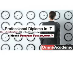 Professional Diploma in IT