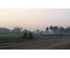 4 Acre 3.6 Kanal Commercial Plot Available For Sale In Tehsil Bhowana Chiniot