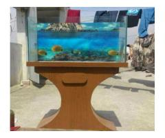 Beautiful Aquarium Almost New With Air Pump Available For Sale In Lahore