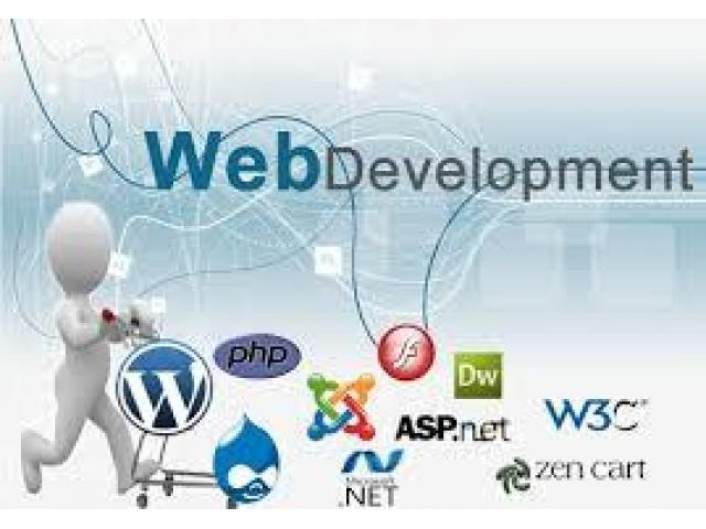 eCommerce Company Required Web Designing And Development Staff -Karachi