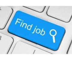Lady Office Coordinator Plus Phone Operator Required for Company Karachi