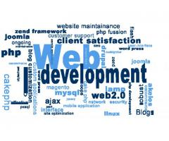 20% Off Professional Website Development | Free Domain and Hosting