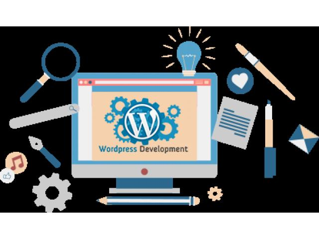 Get Top Quality Of WordPress Web Development Service We Are Experts