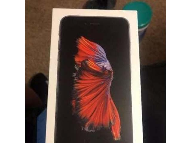 IPhone 6S Plus 16GB Complete Box for sale