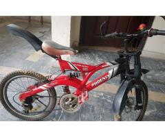 Phoenix brand new cycle for sale