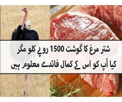 No colestrol no fat Ostrich meat available in Lahore and Pakistan