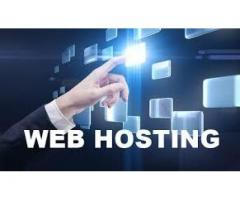 All web hosting companies