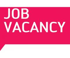 workers with cv greatly needed to work in our home.