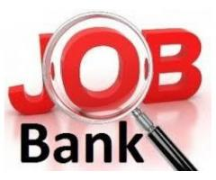Bank job staff required for sale in good amount
