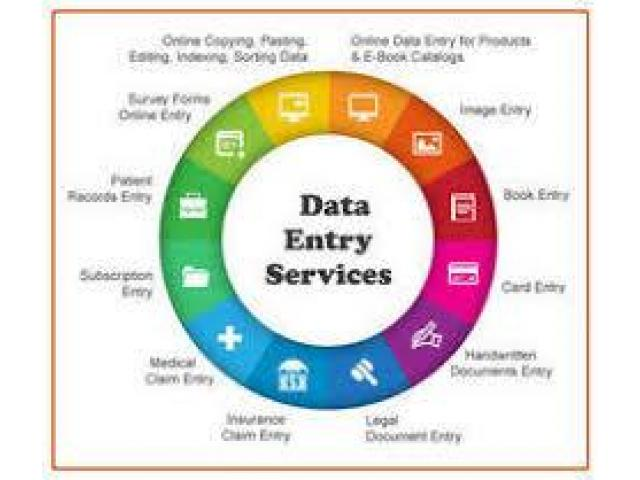 Looking Online Job Data Entry work earning is good