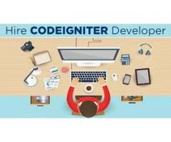 Codeigniter developer required HANDSOME salary
