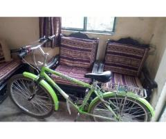 Bicycle phonix FOR sale in good amount