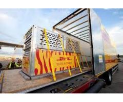 DHL services by air and by sea in all over world