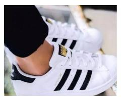Adidas Super Star Shoes for sale