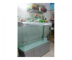 Important Aquarium for sale in good amount