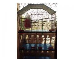 New Large bird Cage for sale