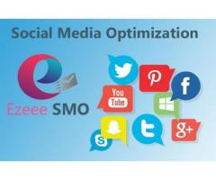Ezeee Search Engine Optimization A Database Provider in Pakistan