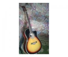 Guitar swift horse brand FOR sale in good amount