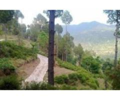 1.2 Acre farmhouse for sale in Murree for sale in good amount