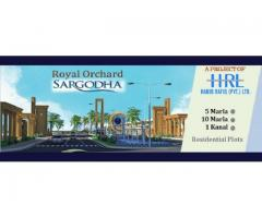 Royal Orchard Sargodha :Residential Plots Are Available On 3 Years Installments
