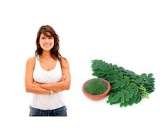 Moringa Oleifera the Miracle Tree   call:  3403506686