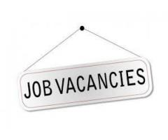 Staff required with a good amount of pay
