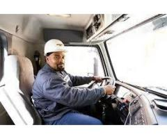Compactant & Driver Driver Refrigerated For UBer / Cream