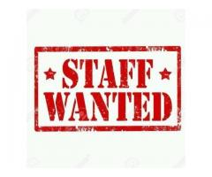 Staff required for sabi international with a good amount of salary