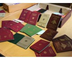 Visa processing, Passports, driving licenses for sale