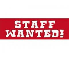 Staff Required male required