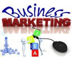 Business and marketing handsome salary