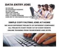 Online Data Entry pay is too good