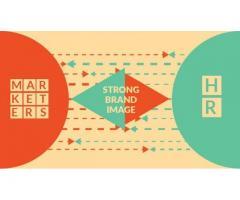 Marketing And HR Internee