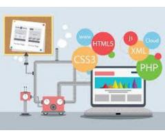 Web Development services for you man