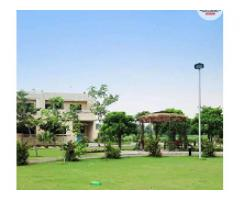 10 Marla Plot No 318 in DHA, Phase 8, Block Z3 Lahore for sale man