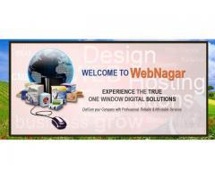 Professional Web Designer Karachi