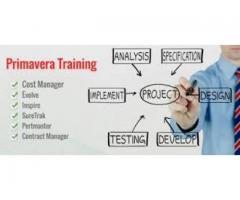 Primavera P6 Trainer required