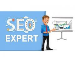 Seo Experts required