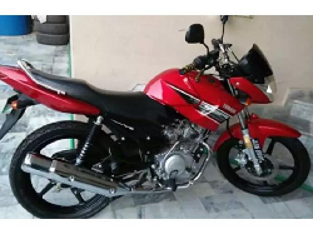 Yamaha YBR for sale in good amount