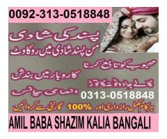 love marriae astrologer   amil bawa 0092-313-0518848