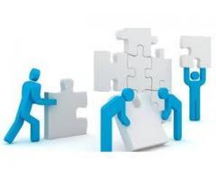 Organization need people