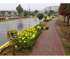 Bahria Enclave Sector O. N . H. I 5Marla for sale